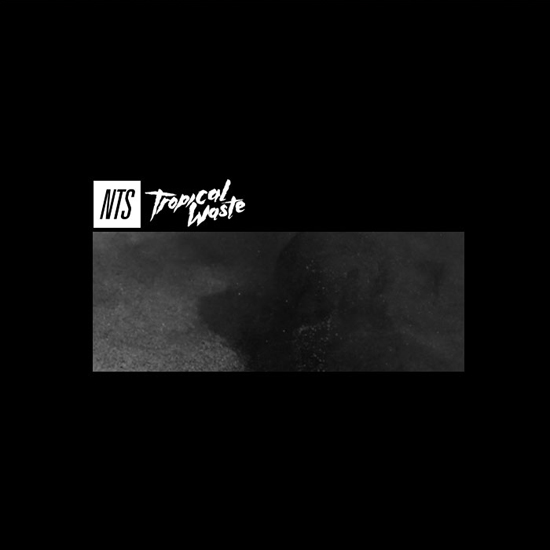 Radd Lounge | 【 ELECTRONIC 】Rizzla – Tropical Waste / NTS Mix (New